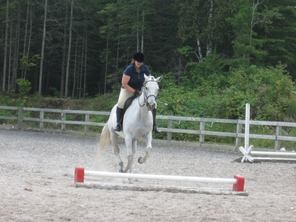 Trish's thoroughbred taking a jump.