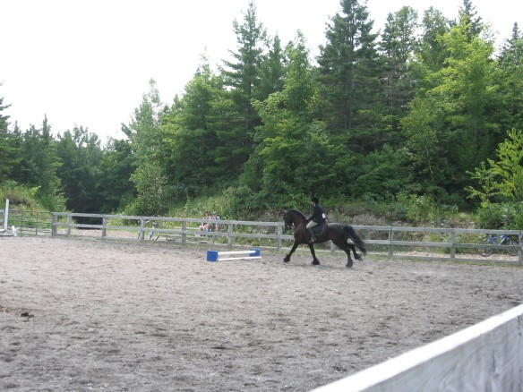 Michelle on her Friesian.
