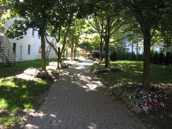 A shady path between buildings at Mission Point.