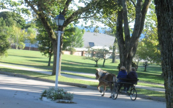 Two ladies in a pony cart travel down Cadotte behind the school.  Over the school's roof, you can see the blue water of Lake Huron.