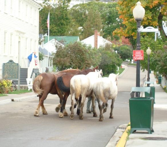 horsemarketstreet3