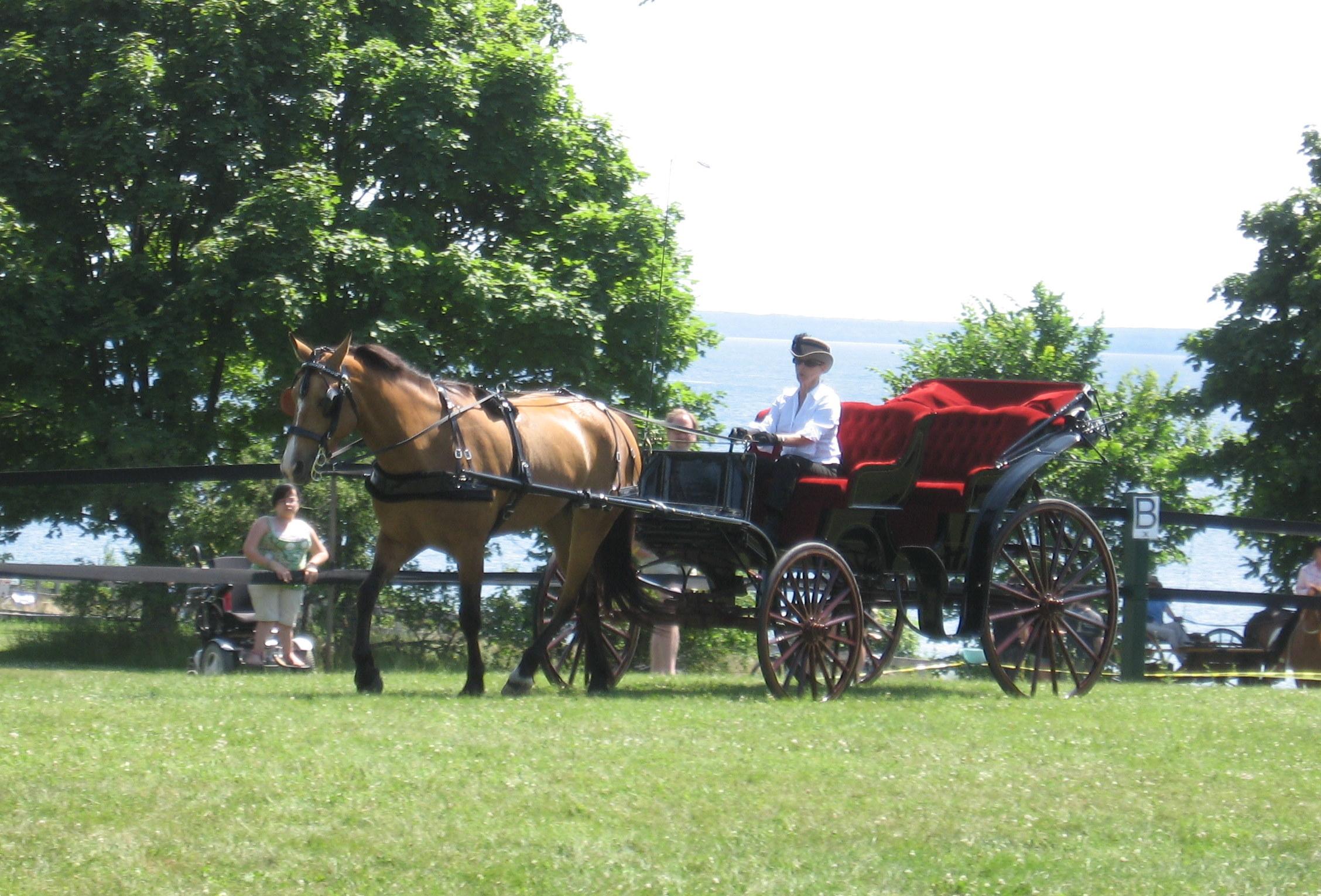 Mackinac Island Horse Driven Tours