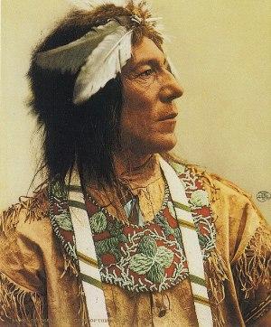 Abotossaway, an Ojibwa chief (1903).