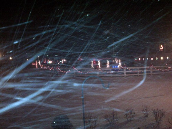 After a few days without snow, a flurry arrived on December 9.  Nicole Doud captured the snowflakes wildly dancing in the wind.