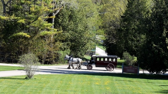 Late afternoon - and a Grand Hotel omnibus heads to the barn.