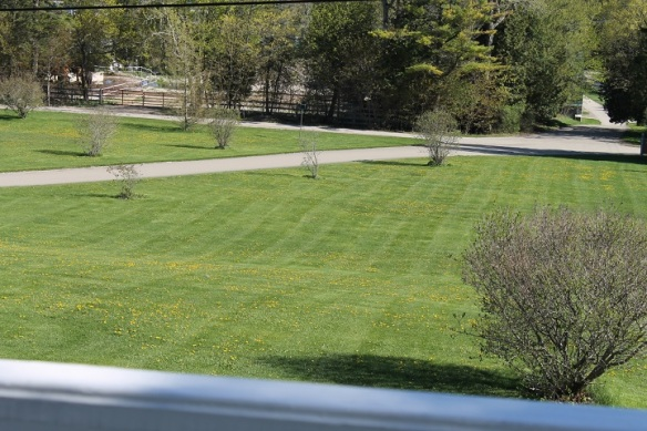 All over the village we could hear lawn mowers being cranked as Mackinac Islanders took advantage of the beautiful day to tidy up yards for the holiday weekend ahead.