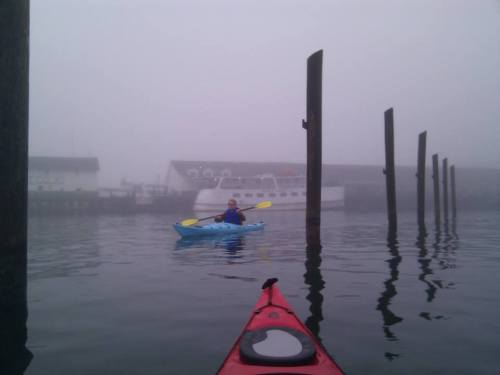 A kayaker floats into Hildebrand Bay with the fog. (Photo: Great Turtle Kayak Tours)