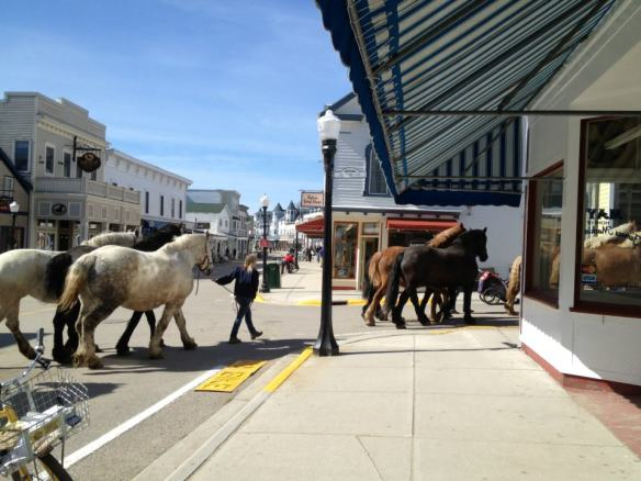 More horses arrive every day and will continue to arrive through June.  (Photo: Mackinac Island Tourism Bureau)