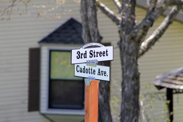 We got new street signs over the winter!  Love these!