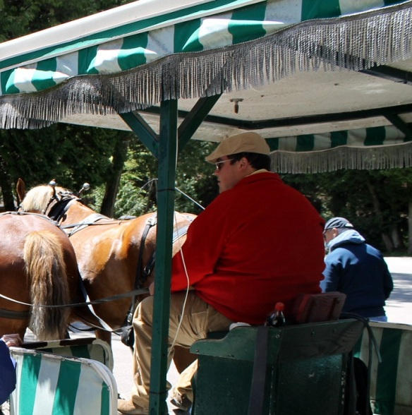 When we caught a three-horse hitch wagon on the back side of the museum, we will fortunate to get Ryan as a driver/guide.  Ryan was so good - informative, quick-witted, friendly, and so funny!