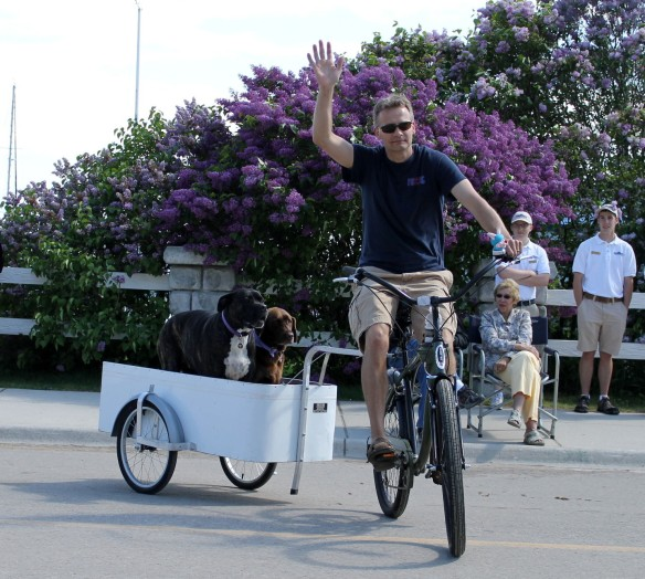 We had celebrity local dogs, like Chloe and Bella, who represented Wheels of Mackinac . . .