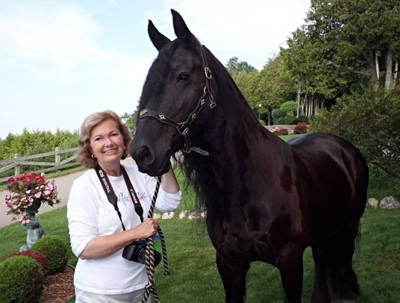 The other day, when we were doing the Senior photo shoot with Brittany, Jill took this one of me with Regina.  Ok, Ok.  Did you really think I wasn't going to get this close to a Friesian and NOT have my photo made!?