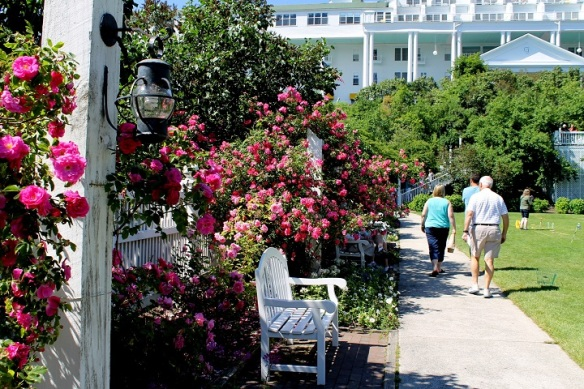 On the way home this afternoon, we walked through the Grand Hotel Rose Garden for the first time this summer.  Always beautiful!