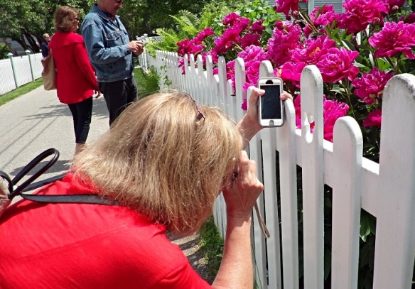 Jill took this one of me trying to capture a peony through the Mickey Mouse cutout in the white fence.