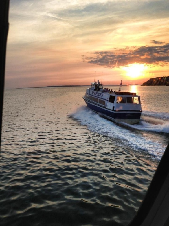 One of Shepler's captains took this great shot - from his pilot house - of another Shepler ferry sailing into the sunset.