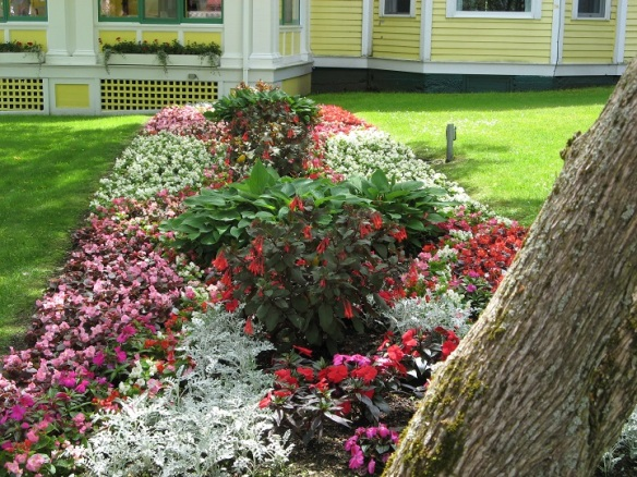 Just one of the beautiful Windermere Hotel flower gardens.