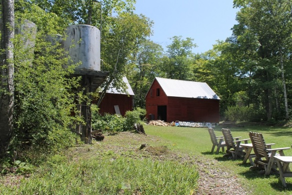 Other buildings on the property include two barns and a shed.  The barns were also full of treasures . . .