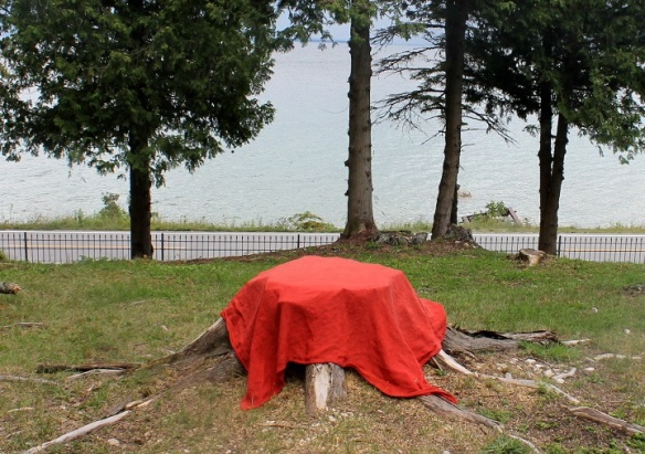 . . . creating an impromptu picnic table out of a stump . . .