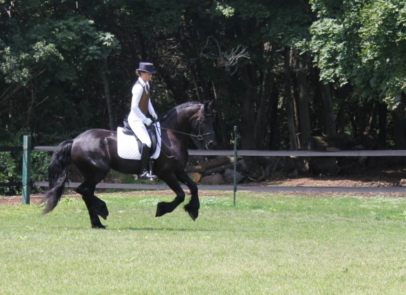 One of the featured performers was Betsy Van Dyke who has trained horses up through the levels from Training Level to Grand Prix, competing in both Wellington and the Midwest.   She did programs both in Dressage . . .