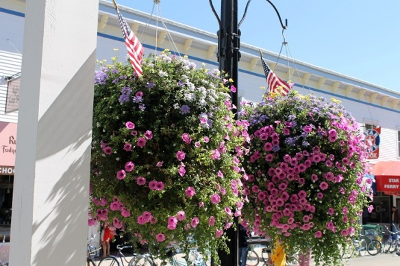 There are just not enough adjectives to describe this summer's street baskets.  Jack Barnwell and his crew outdid themselves this year - both on the streets and at so many public buildings and private homes.  By the way,
