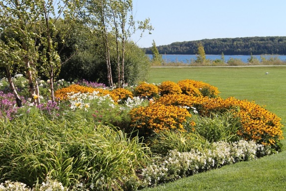 Masses of Black-Eyed Susans provide a riot of color in the flowerbeds surrounding the gazebo.
