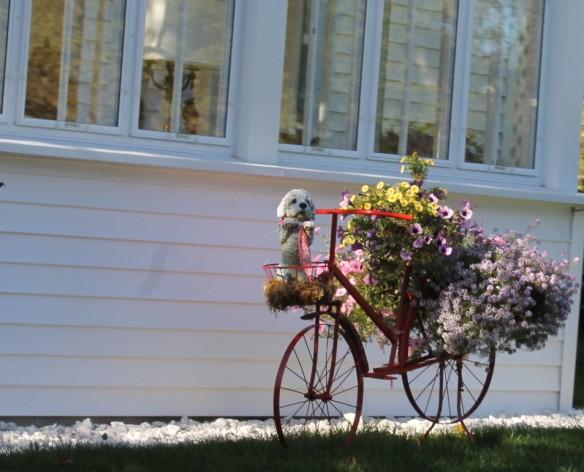 Cute bike outside a home at Chambers Corner.