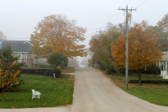 The fall colors shrouded in fog were eerily beautiful as I walked up and down each hill.