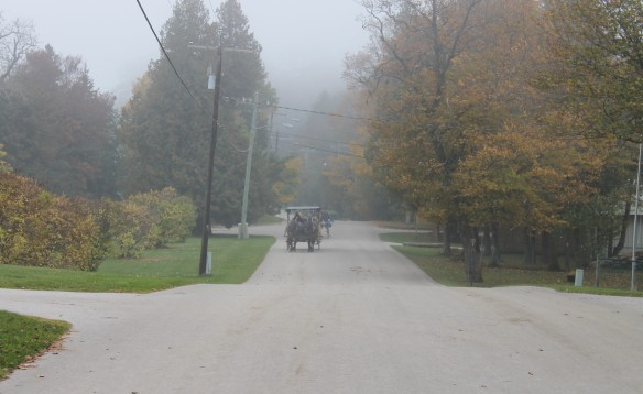 . . . and standing in the middle of the road by the condo to capture the ghostly carriage coming up the hill . . .