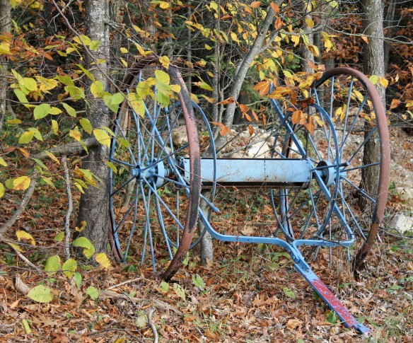 An old hose reel sits among the trees.