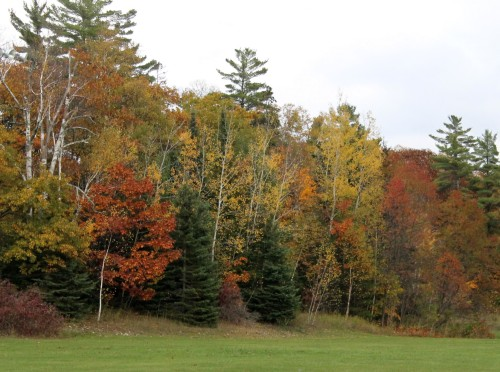 . . . which is surrounded by trees brushed by every October color on God's palette.