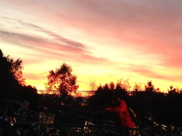 Blazing reds beyond the Grand Hotel bike parking lot.