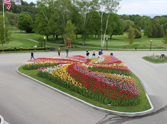 What an awesome landscaping achievement.  A pinwheel garden of tulips!