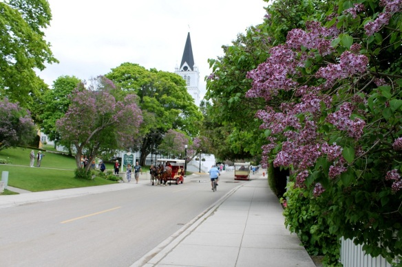 The steeple of St. Anne's always makes a wonderful backdrop for the Main Street lilacs.