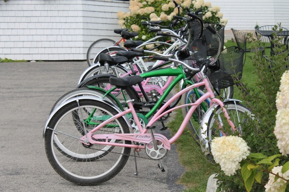 And these pink and green bikes . . .