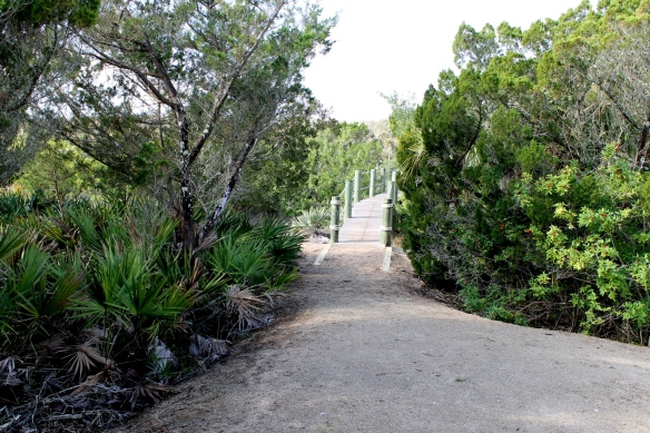 We tell them all about our beautiful home across the street from the ocean and the great nature preserve at the back of Sunset Inlet where we can walk out to the Intracoastal.