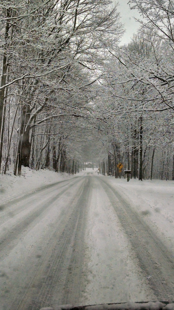 Sarah is from Richland MI, and she snapped this photo last week during the big winter storm.