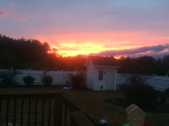 The awesome backyard view of Michael and Kendra from Wilson, NC