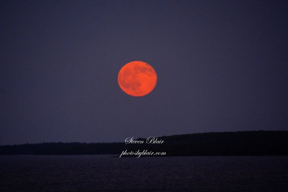 A simply stunning photo by Steven Kopacki of Artistic Mackinadc Gallery and Studio of the strawberry moon rising