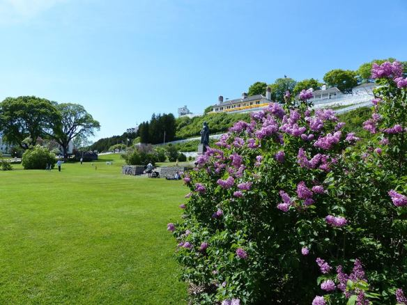 And yes. It is lilac season on Mackinac. The Lilac Festival is in full swing, and the lilacs have cooperated by showing up right on cue! (Photo: Clark Bloswick)