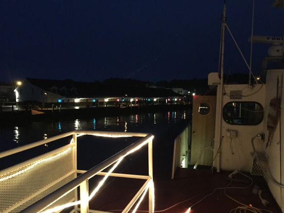 Even approaching dock at night is an adventure
