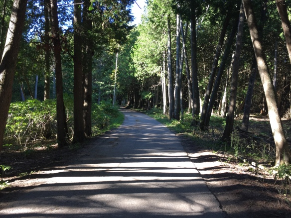 Custer Road - one of my favorites.