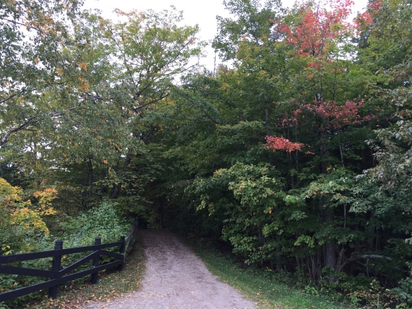 We traveled through a lot of woods and trails flanked on both sides by trees just beginning to show their most brilliant colors.