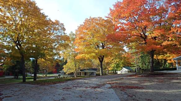 One of my favorite places for Fall color - Surrey Hill!