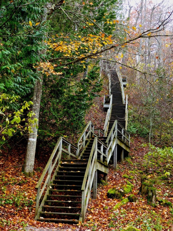I. Love. This. Photo! A beautiful fall image of the steps leading from Sugar Loaf to Point Lookout. (Photo: Patti Carpenter McGreevy)