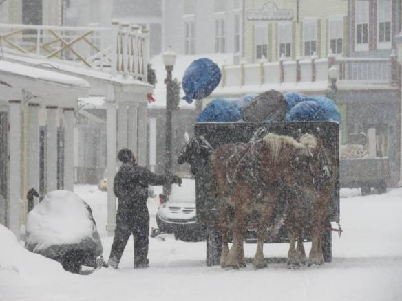 Tuesdays are trash days downtown, and a little snow storm doesn't stop these hard and hardy workers and horses from completing their route!