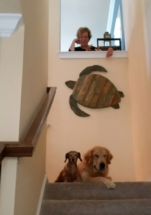 Thought this was a cute pic of the three of us - four if you count the turtle!